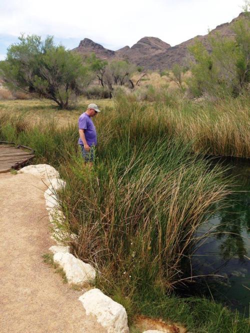 Audible Pond
